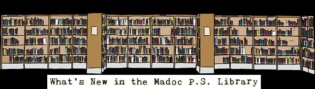 library-shelves 2
